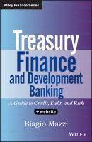 Treasury Finance and Development Banking. A Guide to Credit, Debt, and Risk - Biagio  Mazzi