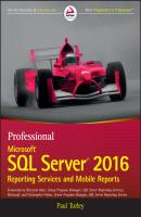 Professional Microsoft SQL Server 2016 Reporting Services and Mobile Reports - Paul  Turley