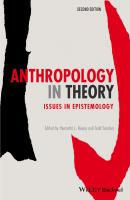 Anthropology in Theory. Issues in Epistemology - Todd  Sanders