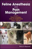 Feline Anesthesia and Pain Management - Polly  Taylor